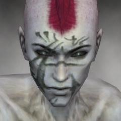 File:Necromancer Elite Kurzick Armor M gray head front.jpg