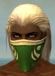 File:Ranger Shing Jea Armor M dyed head front.jpg