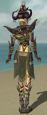 Ritualist Obsidian Armor F gray back