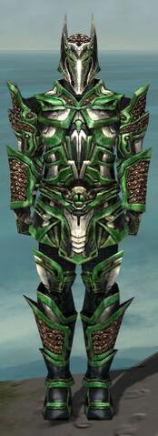 File:Warrior Elite Kurzick Armor M dyed front.jpg