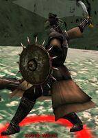 Kurzick Warrior