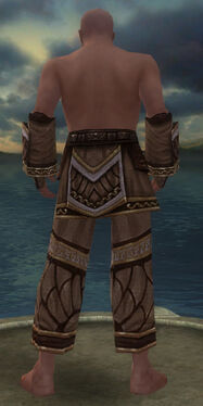 Monk Elite Canthan Armor M gray arms legs back