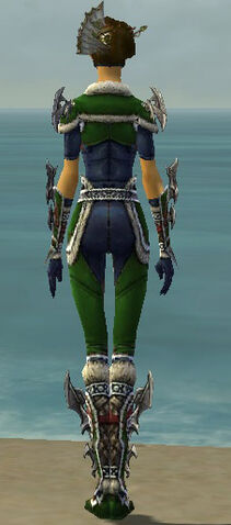 File:Assassin Norn Armor F dyed back.jpg