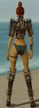 Assassin Elite Exotic Armor F gray chest feet back