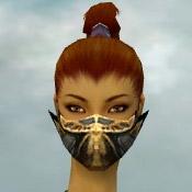 File:Assassin Elite Exotic Armor F gray head front.jpg