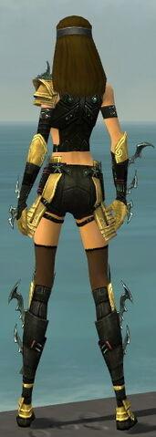 File:Assassin Elite Luxon Armor F dyed back.jpg