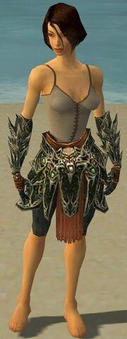 File:Warrior Elite Luxon Armor F gray arms legs front.jpg