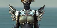 Assassin Asuran armor