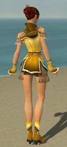 File:Elementalist Shing Jea Armor F dyed back.jpg