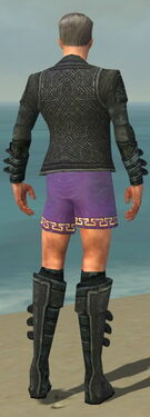 Mesmer Elite Rogue Armor M gray chest feet back
