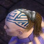 File:Monk Kurzick Armor M gray head side.jpg