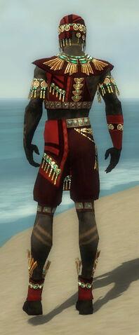 File:Ritualist Elite Luxon Armor M dyed back.jpg