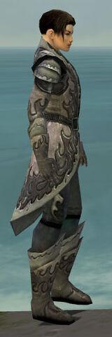 File:Elementalist Flameforged Armor M gray side.jpg