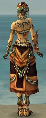 File:Ritualist Elite Luxon Armor F dyed back.jpg