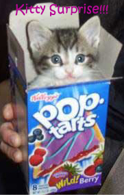 File:Kitty surprise1.jpg