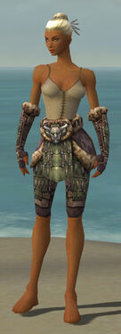 Warrior Charr Hide Armor F gray arms legs front