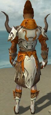 Paragon Norn Armor M dyed back
