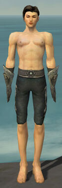 Elementalist Flameforged Armor M gray arms legs front