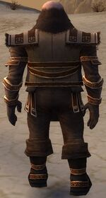 Ogden Stonehealer Armor Brotherhood Back