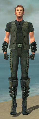 File:Mesmer Rogue Armor M gray front.jpg