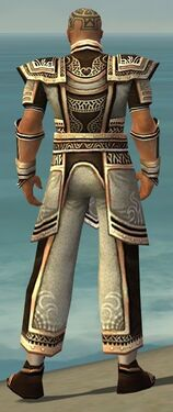 Monk Monument Armor M gray back