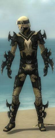 File:Assassin Kurzick Armor M dyed front.jpg