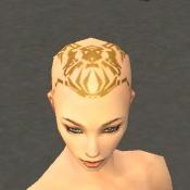 File:Monk Vabbian Armor F dyed head front.jpg