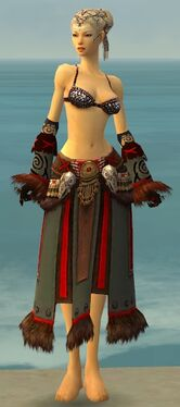 Ritualist Norn Armor F gray arms legs front