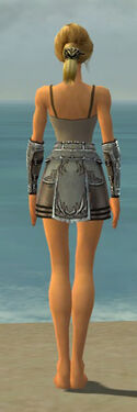 Warrior Istani Armor F gray arms legs back