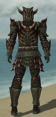 Warrior Elite Dragon Armor M gray back