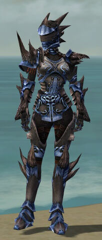 File:Warrior Primeval Armor F dyed front.jpg