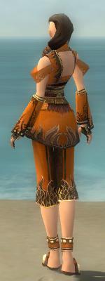 File:Monk Deldrimor Armor F dyed back.jpg