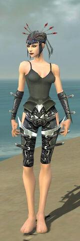 File:Necromancer Profane Armor F gray arms legs front.jpg