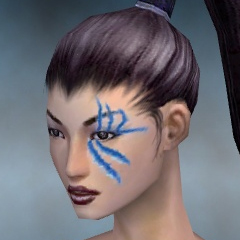 File:Necromancer Tyrian Armor F dyed head front.jpg
