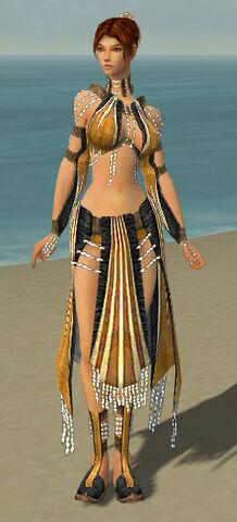 File:Elementalist Sunspear Armor F dyed front.jpg