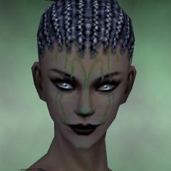 File:Necromancer Elite Sunspear Armor F dyed head front.jpg