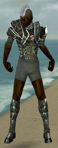 File:Necromancer Fanatic Armor M gray chest feet front.jpg