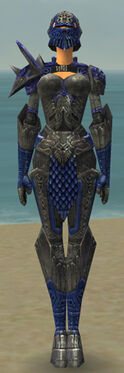 Warrior Elite Platemail Armor F dyed front