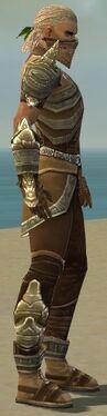Ranger Asuran Armor M gray side