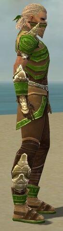 File:Ranger Asuran Armor M dyed side.jpg