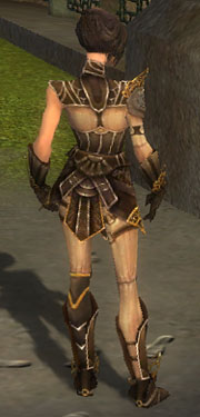 File:Acolyte Jin Armor DajkahInlet Back.jpg