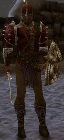 Ascalon Guard Hayden