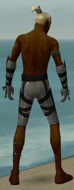 Assassin Obsidian Armor M gray arms legs back