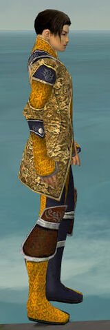 File:Elementalist Canthan Armor M dyed side.jpg