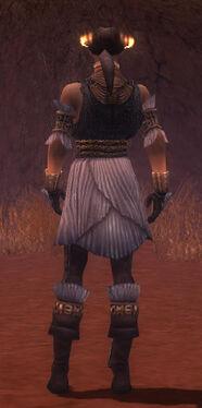 Elementalist Elite Sunspear Armor M gray back