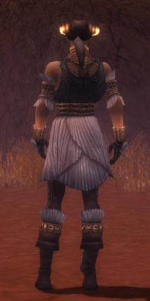 File:Elementalist Elite Sunspear Armor M gray back.jpg