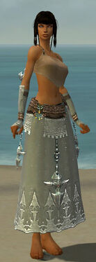 Dervish Vabbian Armor F gray arms legs front