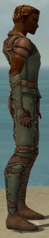 File:Ranger Ascalon Armor M gray side alternate.jpg