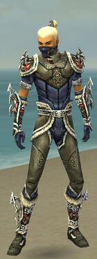 Assassin Norn Armor M gray front