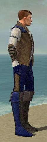 File:Mesmer Enchanter Armor M dyed side.jpg